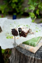 brownies_4
