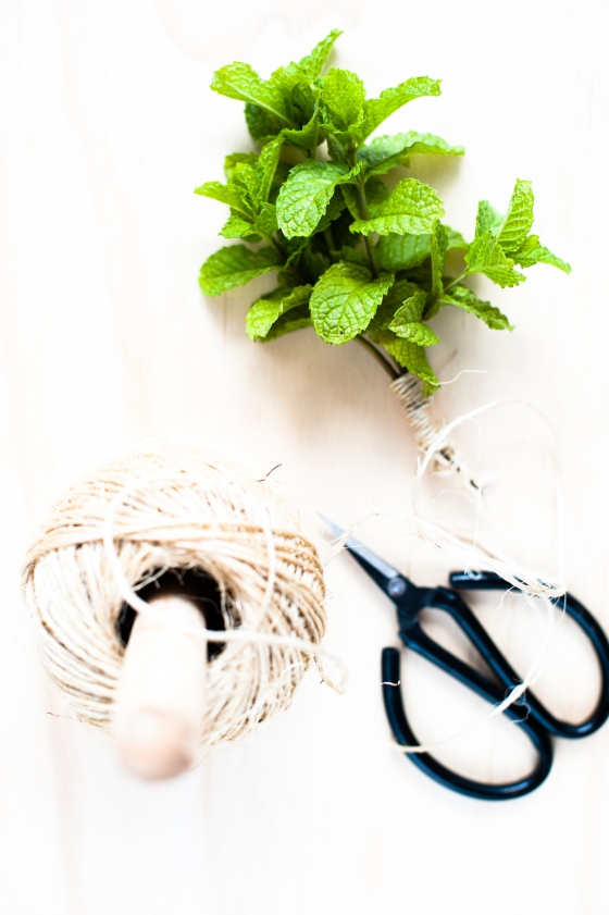 mint and twine